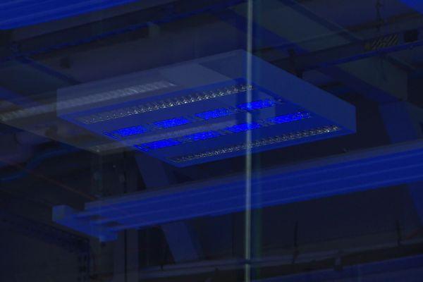 Lorsque la salle est vide, l'éclairage se transforme en dispositif de désinfection par ultraviolets