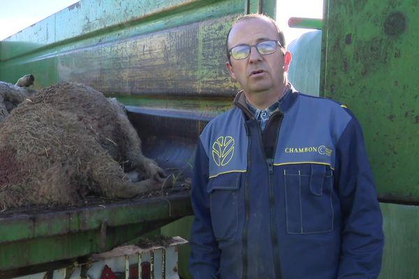 Patrice Chamard découvre une dizaine de brebis égorgées le 16 novembre 2020.