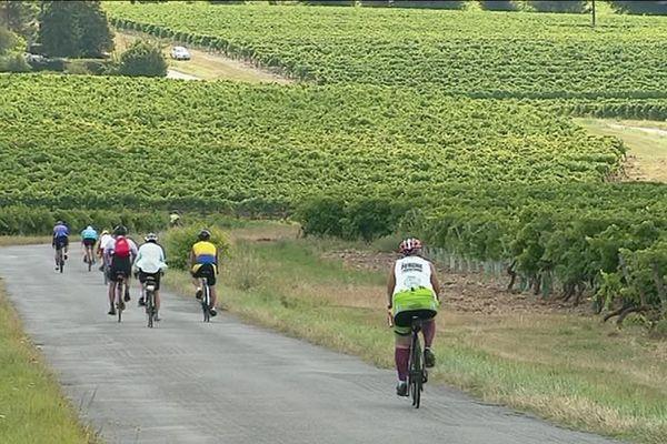 La Semaine fédérale du cyclotourisme réunit près de 10 000 cyclistes sur les routes de Charente et de Charente-Maritime.