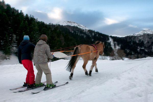 Le ski joering consiste à skier en étant tracté par un cheval.