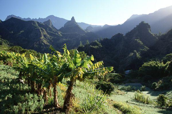 Le championnat de France universitaire de trail a lieu à La Réunion le 4 juin 2017.