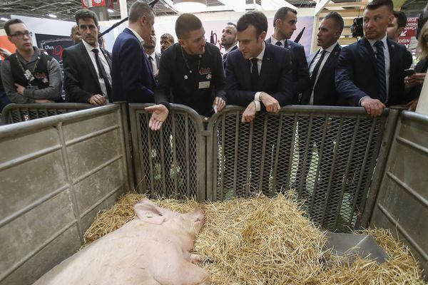 La venue d'Emmanuel Macron, ici au Salon de l'agriculture en 2019, au Sommet de l'élevage, près de Clermont-Ferrand, demeure incertaine.