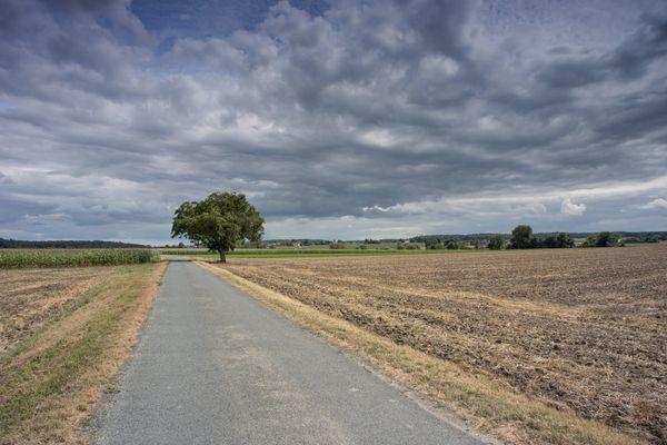 Ces rafales seront les plus fortes en Seine-et-Marne et dans l'Essonne.