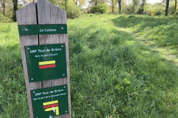 Au milieu de la végétation luxuriante de Brière, suivre les balises du sentier de randonnée est un bon réflexe.