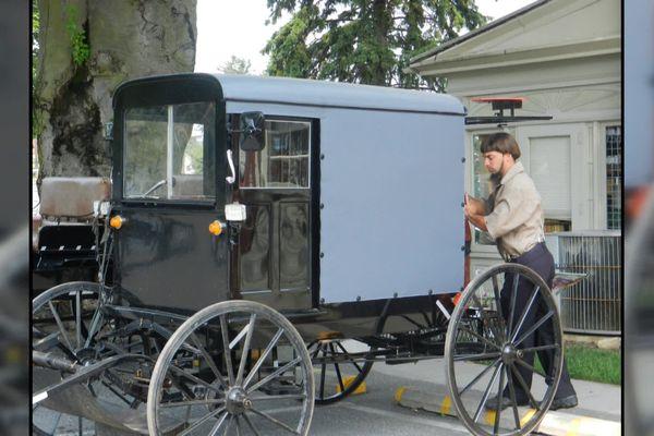 Les Amish sont nés en Alsace et y ont vécu pendant trois siècles, avant d'émigrer aux Etats-Unis, où ils vivent toujours selon leurs traditions