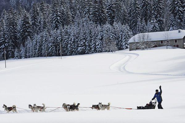 Les mushers n'arrivent pas à répondre à toutes les demandes durant ces vacances de février.