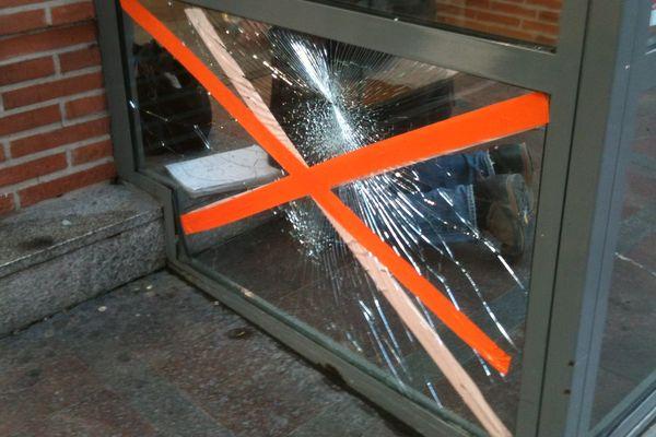 L'animal a défoncé la vitrine d'un grand magasin