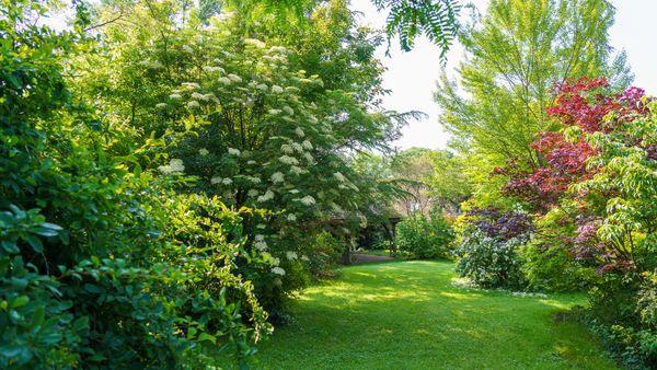 Le jardin des Bartodes
