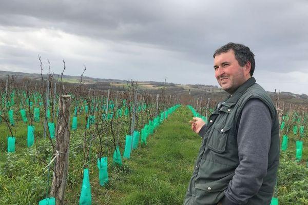Vincent Leyre dans ses vignes