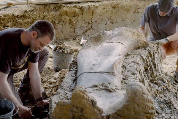 Les paléontologues et chercheurs d'Angeac-Charente