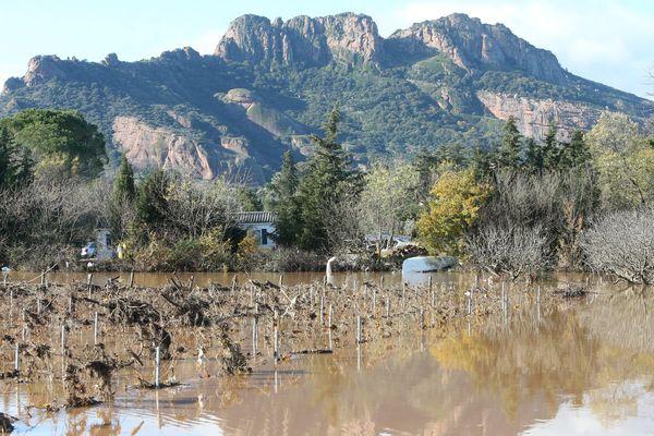Le caractère de calamité agricole est reconnu pour de nombreuses cultures dont la vigne.