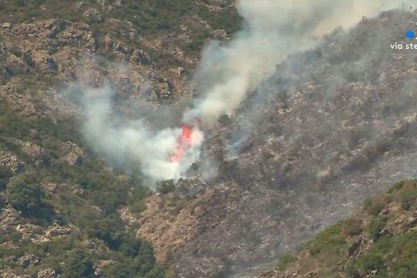 20 hectares de végétations ont déjà brûlé ce vendredi vers 16h30.
