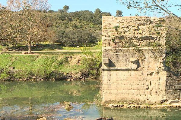 Les berges du Vidourle deviennent un projet Natura 2000