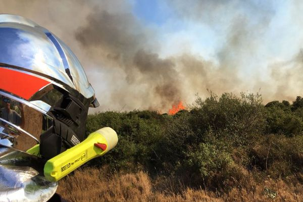La recrudescencede départs de feu de végétation dans les secteurs de Torreilles et de Sainte-Marie-la-Mer avait attiré l'attention des gendarmes. Photo d'illustration.