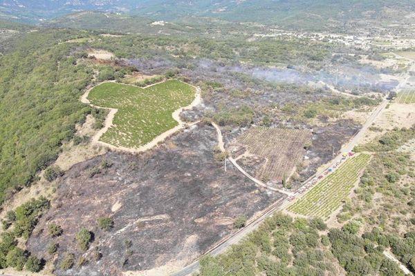 Le feu du Bosc était fixé à 17 heures ce samedi 28 août. Les secours restent actifs sur les points chauds et les lisières.