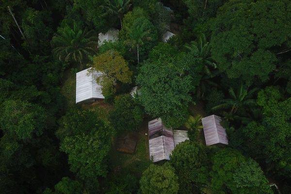 Vue en drone du camp Inselberg, Guyane.