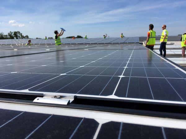 Une partie des 3000 m² de panneaux photovoltaïques sur le toit du MIN de Nantes à Rezé.