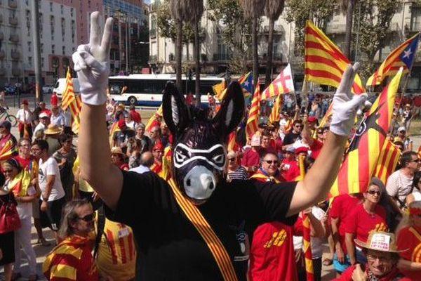 El Burro, plus têtu que jamais, place de la Catalogne à Perpignan.