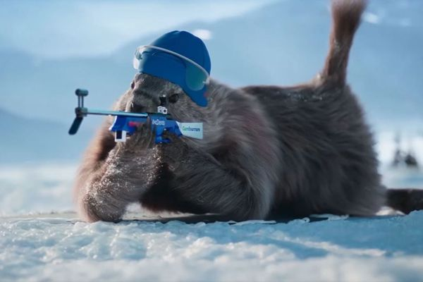 La marmotte biathlète, un clip de France 3 devenu très populaire auprès des internautes.