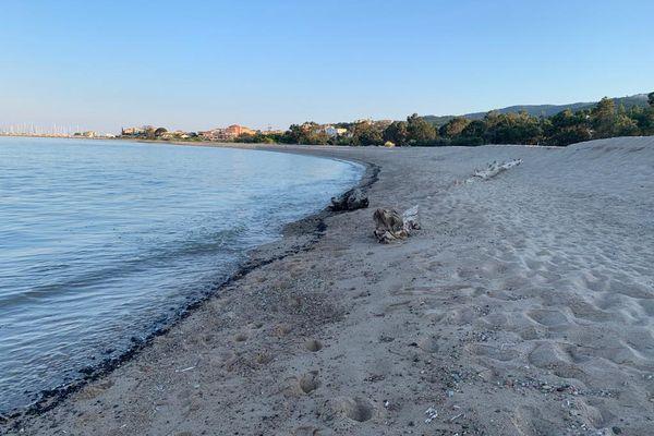 Dimanche 13 juin 2021, Solenzara : un mince ruban composé de boulettes d'hydrocarbures est arrivé sur la plage. La zone a été interdite d'accès.