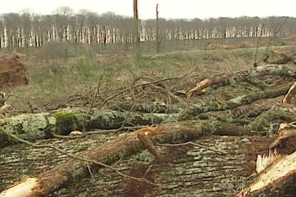 Le 26 décembre 1999, des vents d'une violence exceptionnelle s'engouffrent sur tout le pays. La région Auvergne n'a pas été épargnée.