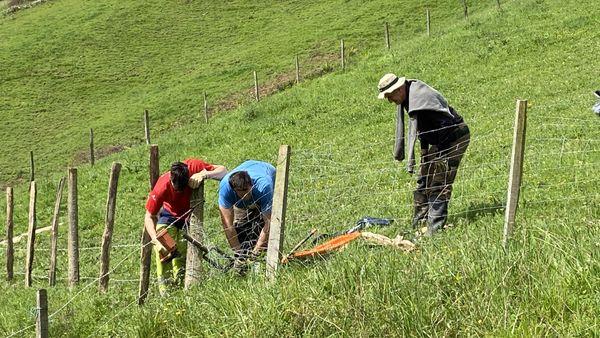 Jean Lassalle et deux de ses fils en pleine réfection de clôture
