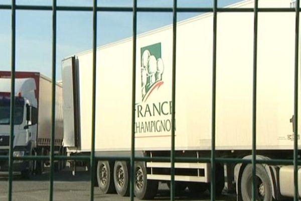 L'usine France Champignon de Thouars fermera définitivement au mois de juin 2016
