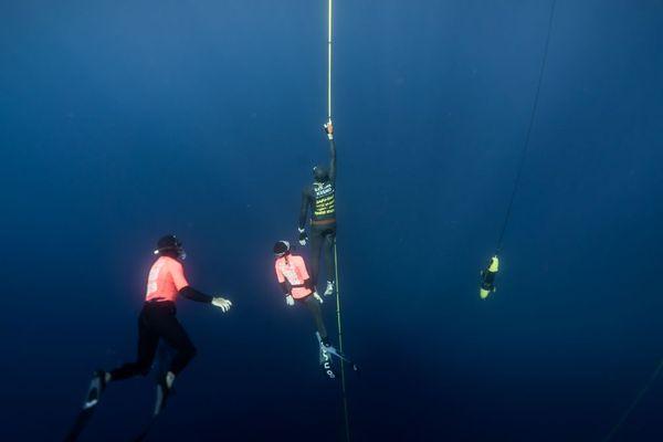 Loïc Vuillemin dans les derniers mètres de sa plongée en immersion libre, ce lundi au mondial Aida d'apnée.