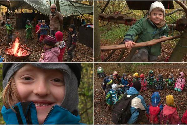 Jardin d'enfants en forêt d'Allschwill