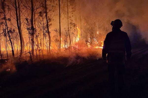 Un incendie a ravagé 290 hectares de forêt le 3/04/21