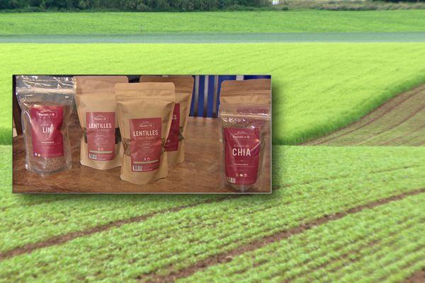 Céréales produites dans une ferme de l'Eure qui participe aux premières Journées nationales de l'agriculture.