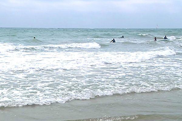 La houle de sud-est a fait le bonheur des surfeurs à Palavas-les-Flots.