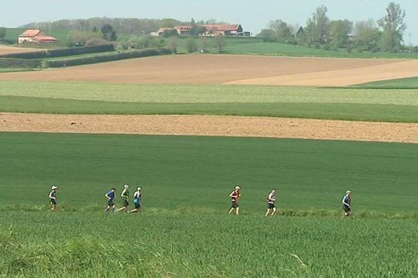 Les concurrents du Trail des Monts de Flandre sous le beau temps et un joli paysage.