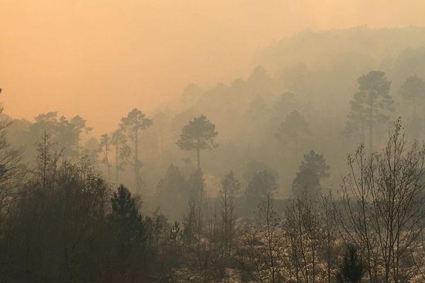 Le risque d'incendie a poussé les autorités à fermer l'accès aux massifs de Piana, Bavella et Illarata (Taglio Rosso).