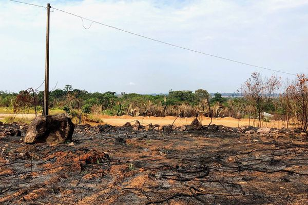 La forêt amazonienne frappée par des incendies, août 2019