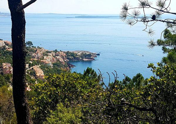 Une vue imprenable sur la Méditerranée.