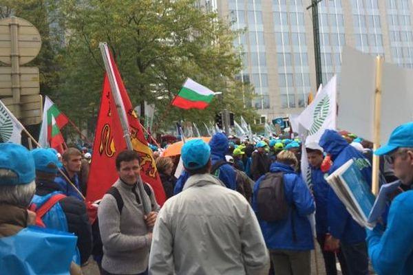 Quelque 300 éleveurs normands ont pris part à la manifestation européenne du 6 septembre à Bruxelles