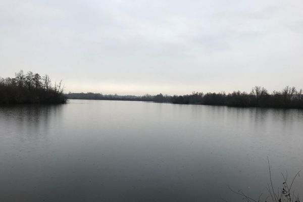 Des cygnes ont été retrouvés morts à Fraimbois fin novembre. Une forte suspicion de grippe aviaire est avancée par la préfecture de Meurthe-et-Moselle.
