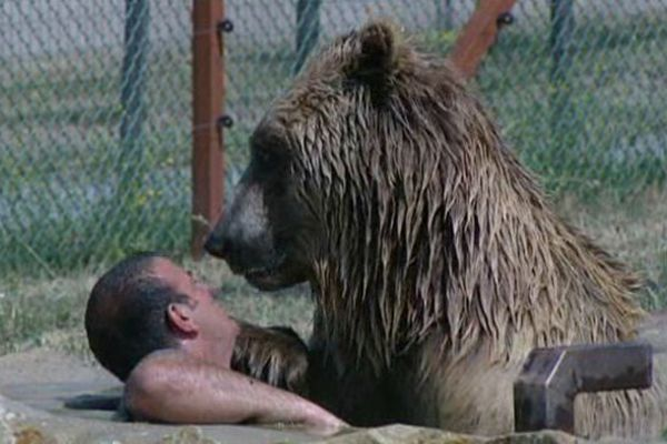 Piscine privée pour l'ours Shadow.