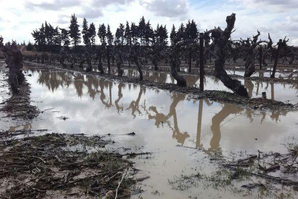 Un violent orage de grêle s'est abattu hier en fin d'après-midi entre Remoulins (Gard) et Tarascon. De quoi inquiéter les viticulteurs et les arboriculteurs. Ce matin, ils respirent. Plus de peur que de mal.