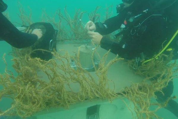 La commune d'Agde va installer des mini-récifs au large des côtes agathoises pour remplacer les balises jaunes - 16 octobre 2017
