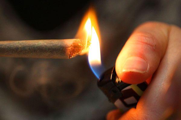 La consommation et la détention de cannabis sont verbalisées à Rennes où l'amende forfaitaire de 200 euros est expérimentée depuis le 16 juin