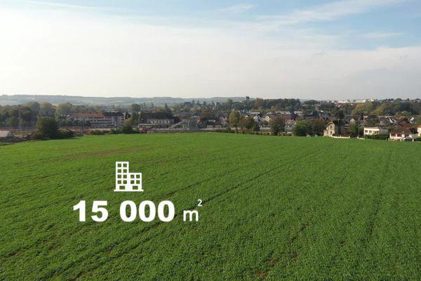 Octobre 2020 – C'est dans ce champ de Gisors (Eure) que pourrait être construite une annexe de la BNF