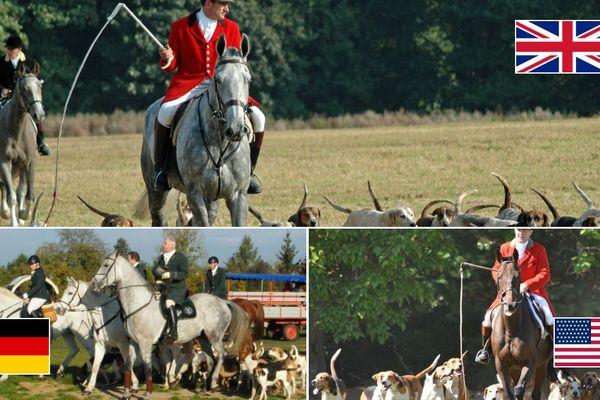 """En haut, photo prise à Lymm (Angleterre), en bas à gauche, une """"Schleppjagd"""" à Wörlitz (Allemagne), en bas à droite  une chasse à Medfield (Massachussetts, États-Unis)"""