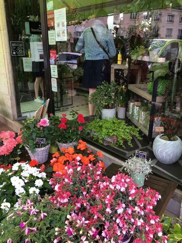 La vitrine des Fougères, un fleuriste de Caen