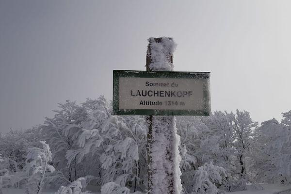 Le sommet du Lauchenkopf givré.