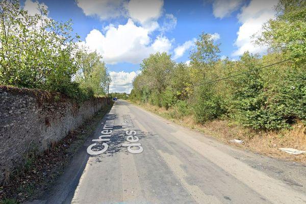 C'est sur le chemin du moulin des marais à Nantes que les cadavres de deux chiens mutilés ont été retrouvés
