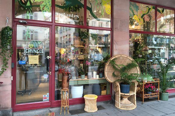 La jardinerie urbaine Tchungle est l'un des premiers refuges répertoriés à Strasbourg.