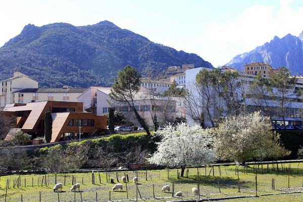 À Corte, l'Université de Corse récompense chaque année depuis 4 ans le meilleur projet étudiant sur l'innovation numérique.