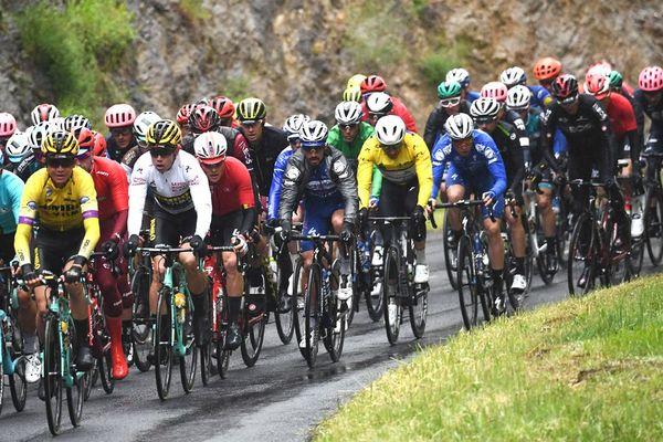 Le peloton lors de la deuxième étape du Critérium du Dauphiné 2019, entre Mauriac et Craponne-sur-Arzon, le 10 juin 2019.